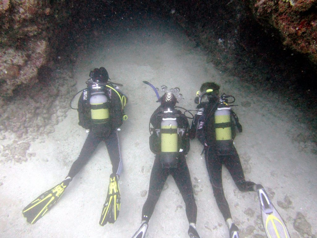 3 divers observing marine life in a cave