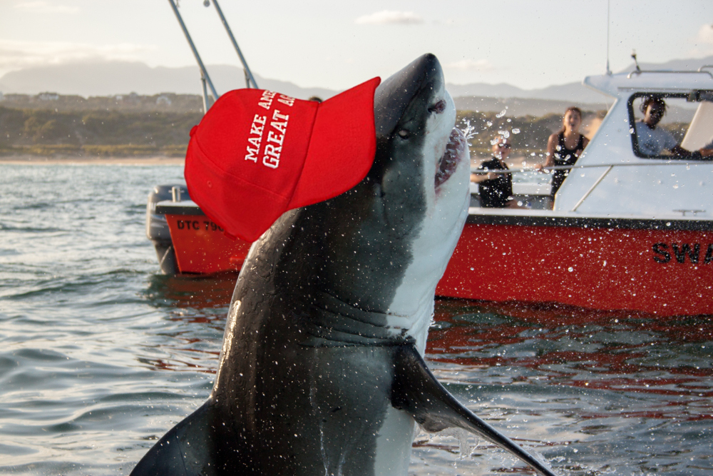 Make The Oceans Great Again