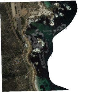Aerial photograph of Miller's Point