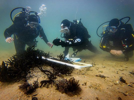 student scientific diver field biologists on a training dive with course instructor