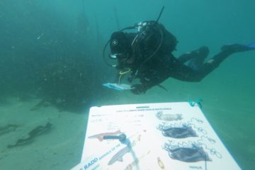 Citizen Science Diver