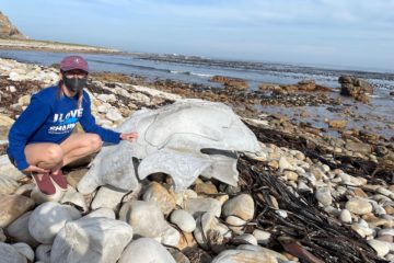 Kyanna poses with a washed up whale bone.