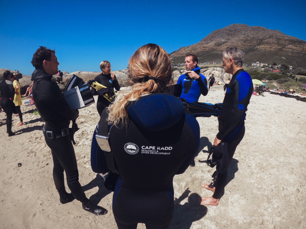 A group of volunteers are briefed by a marine biologist